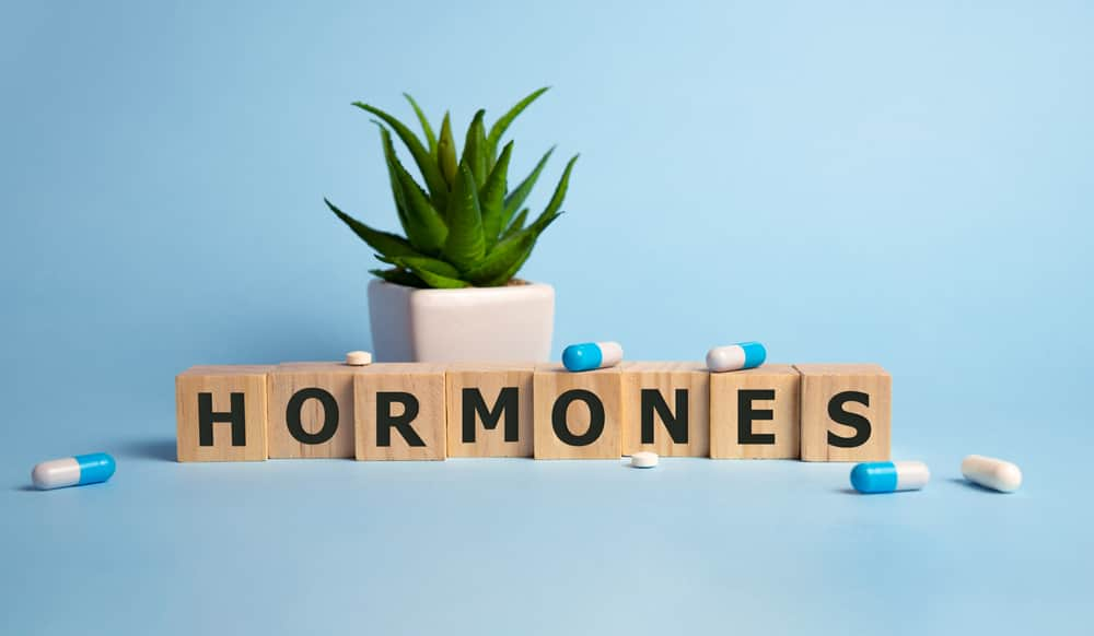 Top 5 Important Hormones in Human Body and Their Functions